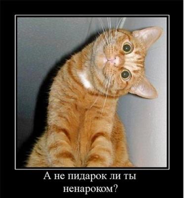 У Путина есть четкое задание - уничтожить Украину, но он просчитался, - Яценюк - Цензор.НЕТ 3522