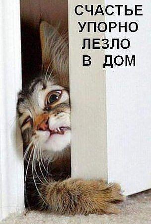Валютный рынок россии 2010